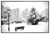 Peace of mind (Daniel_Hache) Tags: fresnes hiver winter february neige parc snow canon eos 550d sigma 1770 flickrchallengegroup landscape