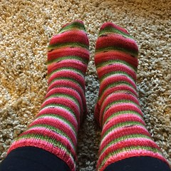 Finished (S1lverst1tcher) Tags: handknitted biscotteyarns handmade winwickmum melonsocks knitting knitted