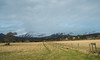 The Coffin Road Newtonmore Raptors (mikeevans12) Tags: wildlife geese spey valley newtonmore mountains
