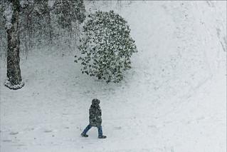 Urban Snow-Walker
