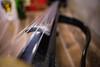 Ana Rucner's cello (Cortez_CRO) Tags: osijek croatia hrvatska ana rucner cello