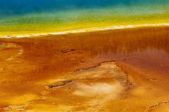 Grand Prismatic_27A0656 (Alfred J. Lockwood Photography) Tags: alfredjlockwood nature abstract midwaygeyserbasin grandprismatic color patterns shapes texture geothermalrunoff geothermalpool extremophiles thermophiles microbialmat summer morning wyoming yellowstonenationalpark