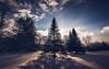I went too far (Nicholas Erwin) Tags: landscape surreal winter cold nature naturephotography shadow light sun nikon d610 2018g nikkor waterbury vermont vt unitedstatesofamerica usa america tree snow fav10 fav25 fav50
