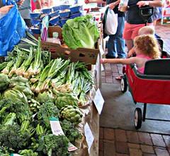 Fresh Picked (di_the_huntress) Tags: fresh vegetables healthy artichokes kids scallions shopping farmersmarket broccolini romaine picmonkey