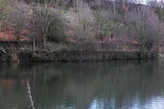 Ulley 009 (Slimboy Fat) Tags: ulley countrypark ulleycountrypark reservoir ulleyreservoir ulleyrotherham england unitedkingdom gb