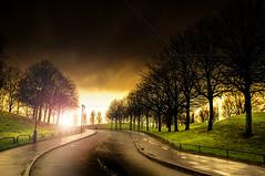 Curved Light (Tony Shertila) Tags: england gbr geo:lat=5341958418 geo:lon=297017097 geotagged liverpool unitedkingdom europe britain merseyside everton road street bend curve trees light sky clouds rain storm