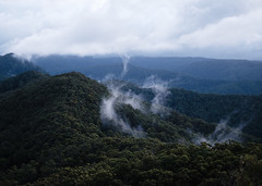 Mt Bally (Locke Nicholls) Tags: mountain mist fog queensland australia bonogin bally goldcoast springbrook xt20 fuji fujifilm