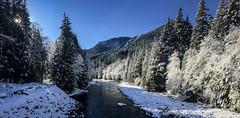 Capilano River (Sean Daniel) Tags: capilano river snow vancouver watershed bc bridge britishcolumbia canada iphone iphonography mountains park sunburst trees yvr