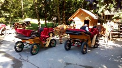 Horses and Carriages at Bled (garethtrooper) Tags: bled slovenia carriage fiaker