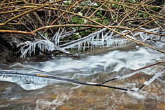 Creeksicles (Reva G) Tags: icicle ice winter creek river water northvancouver northshore mackaycreek mackaycreekpark cold chilly nature