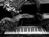 Le Tango Funèbre (Eddy Allart) Tags: dark piano dead flowers flores keys funeral