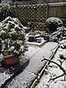 My winter garden (brianarchie65) Tags: garden mygarden plants snow ice unlimitedphotos ngc flickr flickrunofficial ukflickr flickruk flickrcentral teapot birdfeeder iphonese geotagged brianarchie65 birdbath flickrfriday