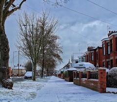 A snowy wintry street. ☃❄☃ (LeanneHall3 :-)) Tags: street streetlamps snow snowscene cars houses paths footprints canon 1300d