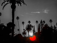 """""""Dying was nothing and he had no picture of it nor fear of it in his mind."""" ―Ernest Hemingway ☀️ (anokarina) Tags: hollywoodforever cemetery hollywood losangeles la california ca palmtrees sunset clouds kalifornia fujifilmfinepixz1 adobephotoshopexpress colorsplash hollywoodstudiodistrict red silhouettes"""
