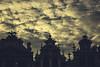 1697 (robertosanchezsantos) Tags: grandplace bruselas belgica brussels belgium viaje travel europa europe urbano urban ciudad city nubes cielo edificio arquitectura torre