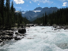 River of No Return .... (Mr. Happy Face - Peace :)) Tags: nature scenery albertabound art2018 jasper banff alberta canada trees wilderness river hiking clouds 7dwf landscape pristine sky sun snowcaps rockies jasperhyway flyfishing h2o maryjane marilyn