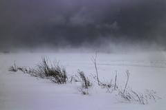 Storm (johnkaysleftleg) Tags: winter storm thebeastfromtheeast northeast england seaham countydurham snow clouds wind bleak canoneosm