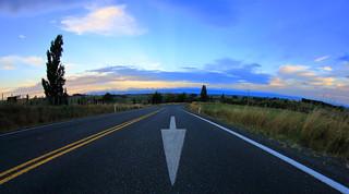 White Arrow. Buckland Road Matamata . (