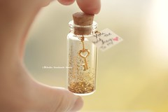 you hold the key to my heart,Tiny message in a bottle,Miniatures,Personalised Gift,Love Card,Valentine Card,Gift for her/him,Girlfriend gift, birthday card, miniatures card and holiday card ideas (charles fukuyama) Tags: gold messagecard handmadecard greetingscard seasonalcard unique glitter homedecor decoration deskdecor tiny valentineday anniversarycard funnycard kikuike
