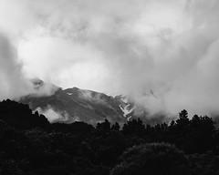 Shy Mountain (Konrad Kasperski) Tags: nz bw taranaki mountains landscape