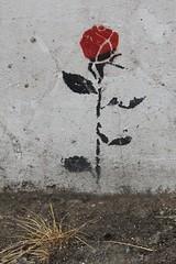 Endless_0638 Quaker street London (meuh1246) Tags: streetart london londres endless quakerstreet fleur shoreditch