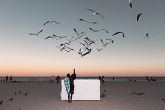 The Sunshine State by francois ollivier - Photographic diary from Florida