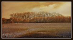 Gingelom (patrick.verstappen) Tags: gingelom flickr facebook google texture textured photo picassa pinterest pat patrickverstappen nikon d5100 sigma winter landscape texturedlandscape evening