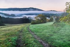 Morning Side (*Capture the Moment*) Tags: 2017 autumn clouds fotowalk herbst himmel panoshot panoramablick panoramaview sky sonne sonya7m2 sonya7mii sonya7mark2 sonya7ii sonyfe2470mmf4zaoss sonyilce7m2 sun wetter wolken