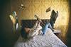 Homework (N.D.K.K.) Tags: 20mm ef20mmf28 room madrid arroyomolinos levitation bed wallpaper photography photo photoshop portrait kayra revista canon5dmarkii vintage viejo yellow