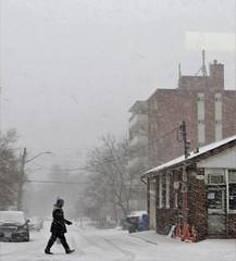 Streetsville. (Gillian Floyd Photography) Tags: snow winter streetsville