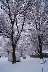 Snow! (tomcomjr) Tags: sonyilca77m2 sal1855 snow neighborhood street alley driveway cars houses carport polycart porch chair