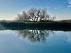 iph8108 (gzammarchi) Tags: italia paesaggio natura ravenna marinaromea piallassabaiona piallassa capanno lago canale riflesso albero tamerice explore