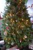 Christmas Tree & Ornaments (Heath & the B.L.T. boys) Tags: christmas ornaments mushroom douglasfir tree gnome toadstool snowflake wood