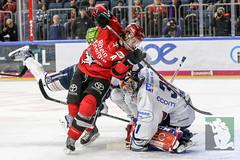 DEL2018-129.jpg (sushysan.de) Tags: bundesliga del deutscheeishockeyliga eishockey iserlohn iserlohnroosters kec köln kölnerhaie lanxessarena pix pixsportfotos roosters saison20172018 pixsportfotosde sushysan sushysande