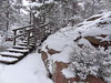 (evisdotter) Tags: winter nature sooc snow trees heather trappa stairs