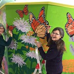 Artists Creating the Monarch Butterfly Migration Shanty thumbnail