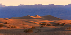 Sunrise in a bowl (leakylightbucket) Tags: deathvalley mesquite sanddunes sunrise morning