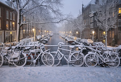 Cold and cozy nights in Amsterdam (B℮n) Tags: holland netherlands nederland bike snow covered bikes bicycle canals winter cold street anne dutch people scooter gezellig cafés snowy snowfall atmosphere colorful walk walking cozy light corner water canal weather cool sunset celcius mokum grachtengordel unesco world heritage sled sleding slee seagull nowandthen meeuw bycicle 1°c sun sneeuw brug slippery glad flakes handheld wind amsterdam colours colors jordaan linden boom tree iep elm egelantiersgracht 100faves topf100 200faves topf200 300faves topf300