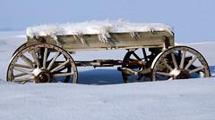 Snow Covered Wagon (AmyEHunt) Tags: snow winter ice wagon wood sky sun blue white wheel illinois