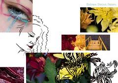 PR - Development (Skye Kember) Tags: joie et beauté ss18 collection distinct pattern embrace experiment develop bold makeup macrophotography patterns nature