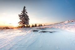 Earlyschöckeln Winter Sunrise (Andreas Neuburger) Tags: austria bench cloud coldtemperature colorimage horizontal nature outdoors people photography scenics sky snow solitude styria sunrise tree