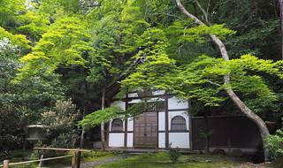 Honen-in Temple..  Kyoto