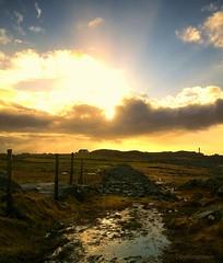 The torch (evakongshavn) Tags: sun sunshine new light yellow landscape landschaft paysage natur nature sundaylights