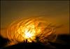 Sunset Macro (McRusty) Tags: sunset macro buzzard feather silhouette set setting sun glowing orange beautiful natural outdoor scotland dell estate stratherrick highland