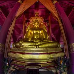 Thailand - Bangkok - Ancient City 79_Temple interior_sq_DSC6294 (Darrell Godliman) Tags: thailandbangkokancientcity79templeinteriorsqdsc6294 fisheye 8mm samyang squareformat bsquare squares sq buddha temple
