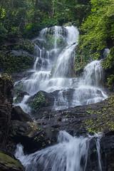 Hulikal Falls (srikanthsamaga) Tags: hulikal theerthahalli malnad kundapura ghats westernghats green waterfalls karnataka karnatakatourism nammakarnataka india incredibleindia longexposure nature travel roadtrip outdoor