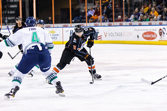 """Kansas City Mavericks vs. Florida Everblades, February 18, 2018, Silverstein Eye Centers Arena, Independence, Missouri.  Photo: © John Howe / Howe Creative Photography, all rights reserved 2018 • <a style=""""font-size:0.8em;"""" href=""""http://www.flickr.com/photos/134016632@N02/39491162455/"""" target=""""_blank"""">View on Flickr</a>"""