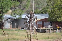 8-foot Intercolonial Boring Company (IBC) Geared Simplex; NSW, Australia (sarracenia.flava) Tags: ibc geared simplex intercolonial boring company nsw australia windmill