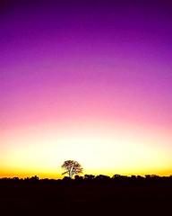 African sunset (Solene.lgs) Tags: travelphotography travelpic travellers zimbabwe sun natgeo nature sunset africa