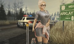 ꧁꧂ Under the golden sky ꧁꧂ (Petite Chouky) Tags: laq petite chouky villena sl second life bento police car city road